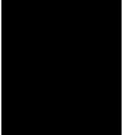 Pinkerton logo 175px