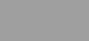 Sentric logo 175px
