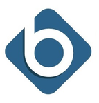Banyon Data Systems