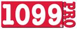 1099 Pro