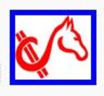 Horse Cents Software Company