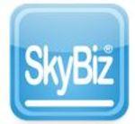 SkyBiz - ERP