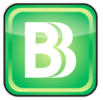 BizBudg Online