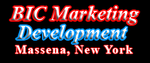 BIC Marketing Development