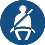 SI Auto Pro