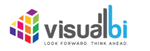 Visual BI Platform