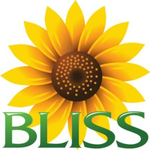 Bliss Healthcare