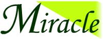 Miracle Software Solutions