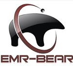Enterprise Platform vs. EMR-Bear