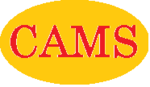 CAMS Dealership Management System