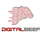DigitalBeef