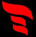 e-Centric Consultancy Services