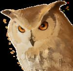 GPS Owl