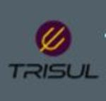 Trisul Network Analytics
