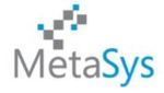 MetaSys Software