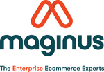Maginus Software Solutions