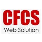 Computer Frontline Consultancy Service