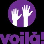 Voila app