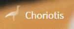 Choriotis