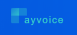 Payvoice