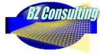 BZ Consulting