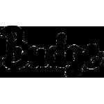Budge Technology
