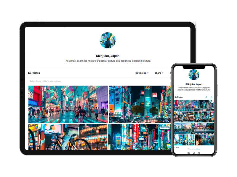 pCloud Business - Bekijk prijzen, reviews en scores - Capterra
